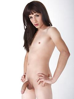 Small Tits Shemale Pics